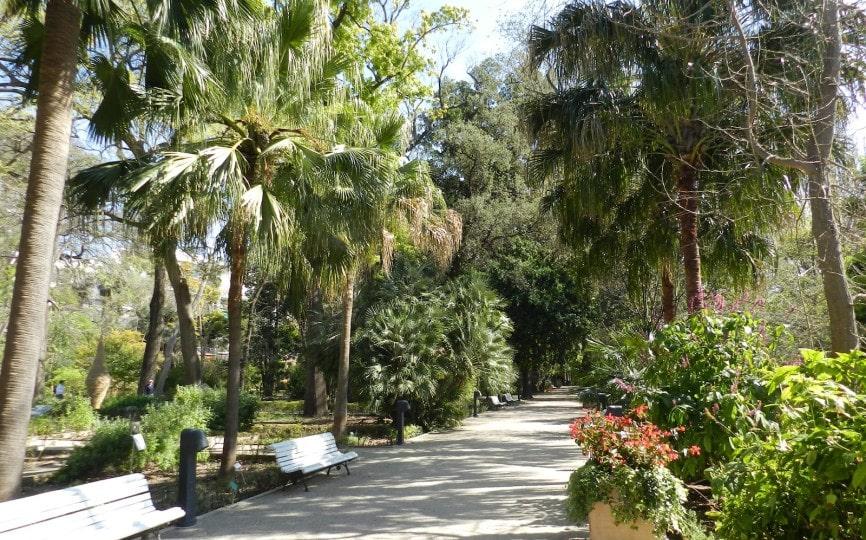 jardin botanico foto artikel